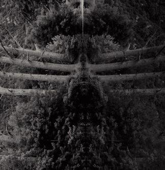 MEMBRANE Reflect Your Pain LP