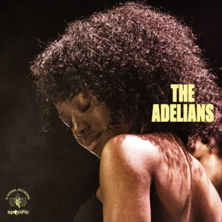 THE ADELIANS S/t - Vinyl LP (brown/orange marbled)