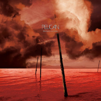PELICAN What We All Come To Need - Vinyl 2xLP (wine red/black splatter)