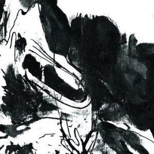 PERSPEX FLESH s/t – Vinyl LP (black)