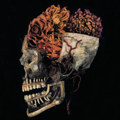 KINGDOM Hemeltraan - Vinyl LP (solid red)