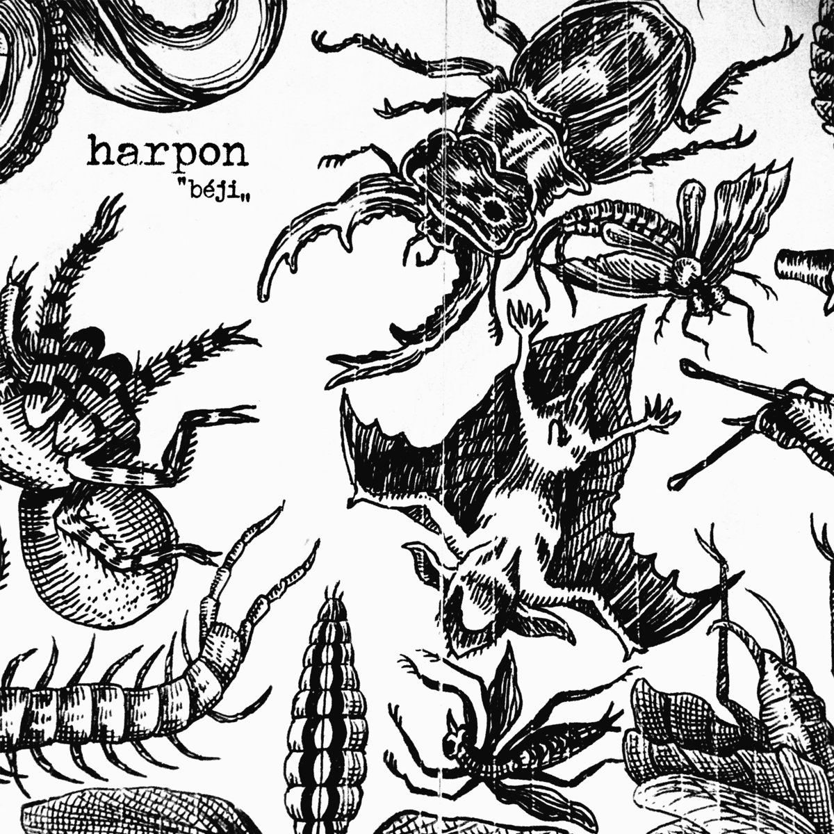HARPON Béji - Vinyl LP (black)