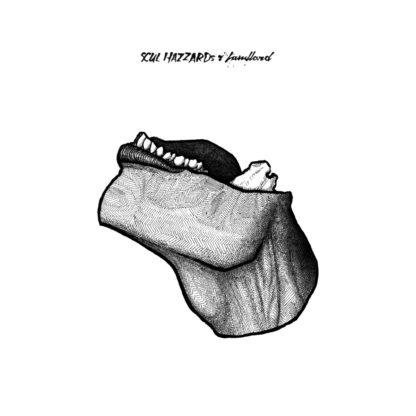 SCUL HAZZARDS Landlord - Vinyl LP (black)