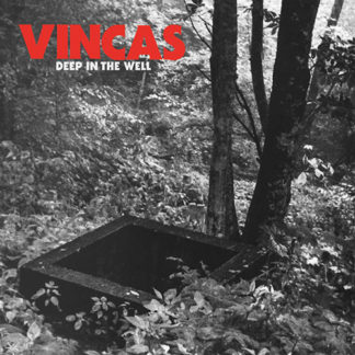 VINCAS Deep In The Well - Vinyl LP (black)