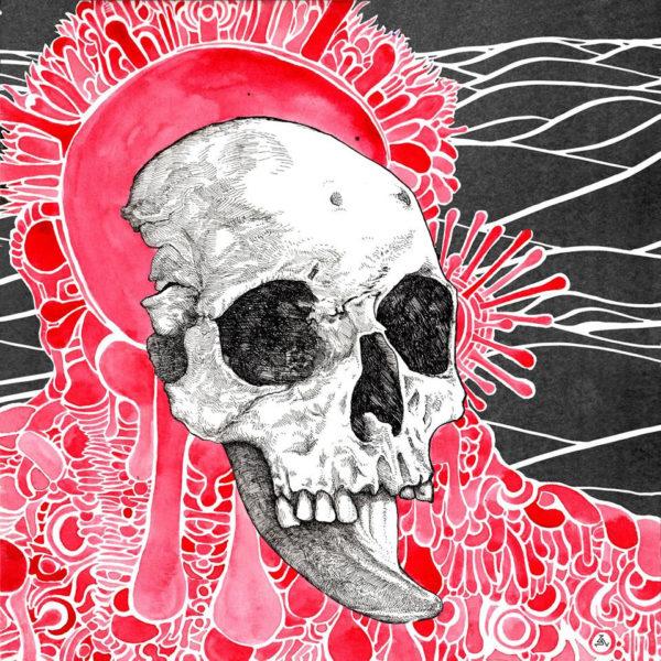 MICHEL ANOIA Plethora - Vinyl LP (black)