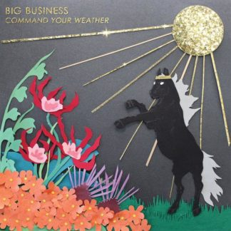 BIG BUSINESS Command Your Weather - Vinyl LP (black)