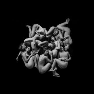 CELESTE Infidèle(s) - Vinyl 2xLP (black)