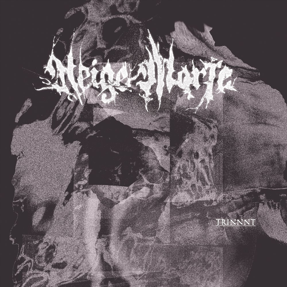 NEIGE MORTE Trinnnt - Vinyl LP (black)