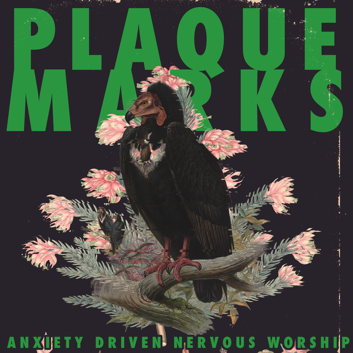 PLAQUE MARKS Anxiety Driven Nervous Worship – Vinyl LP (transparent green with gold splatter)