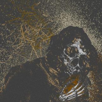 VERMIN WOMB Decline - Vinyl LP (black)