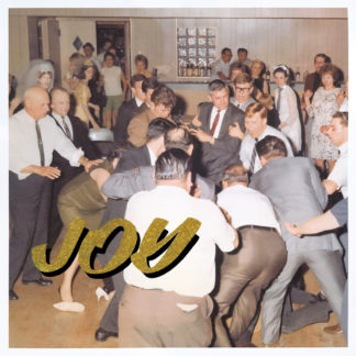 IDLES Joy as an Act of Resistance - Vinyl LP (black)