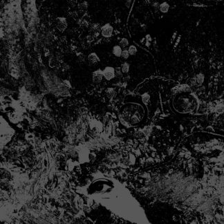 PRIMITIVE MAN / UNEARTHLY TRANCE Split - Vinyl LP (black)