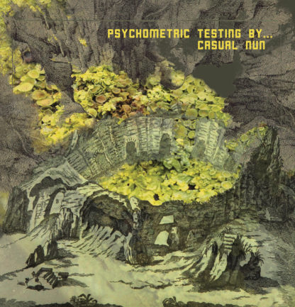 CASUAL NUN Psychometric Testing By​.​.​. - Vinyl LP (black)