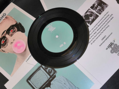 """THE FERAL YOUNG I Haven't Seen Myself in a While - Vinyl 7"""""""