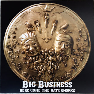 BIG BUSINESS Here Come The Waterworks - Vinyl LP (black)