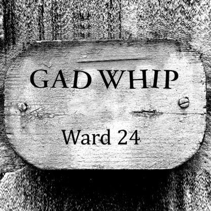 "GAD WHIP Ward 24 - Vinyl 7"" (black)"