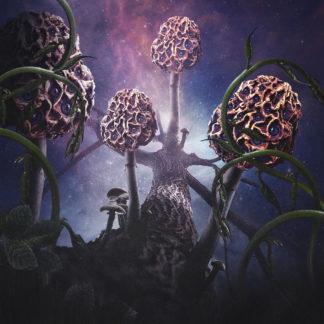 BLUT AUS NORD Hallucinogen - Vinyl 2xLP (neon half purple / half magenta with splatters)