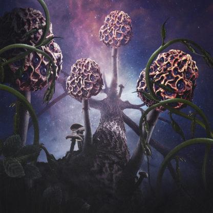 BLUT AUS NORD Hallucinogen - Vinyl 2xLP (black)