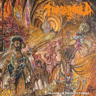 TOMB MOLD Manor Of Infinite Forms - Vinyl LP (neon orange with black smoke)