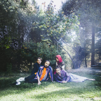 BIG THIEF U.F.O.F. - Vinyl LP (black)