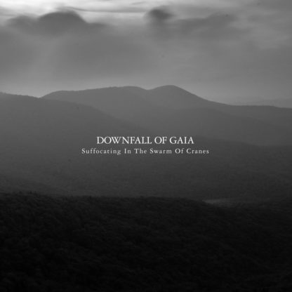 DOWNFALL OF GAIA Suffocating in the Swarm of Cranes - Vinyl 2xLP (clear black marbled)