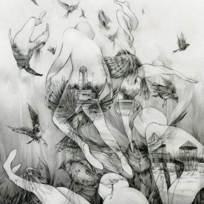 MONO The Last Dawn - Vinyl LP (black)