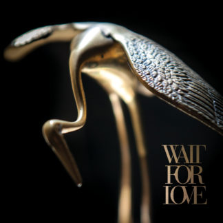 PIANOS BECOMES THE TEETH Wait For Love - Vinyl LP (black)