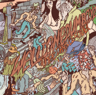 WELLDONE DUMBOYZ Tombé dans l'escalier - Vinyl LP (black)