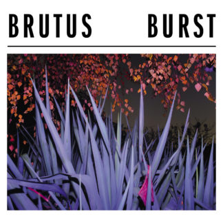 BRUTUS Burst- Vinyl LP (black)