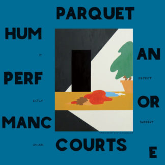 PARQUET COURTS Human Performance - Vinyl LP (black)