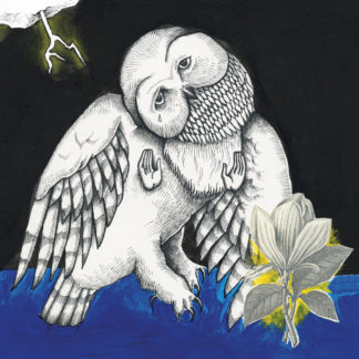 SONGS: OHIA The Magnolia Electric Co (10th anniversary deluxe edition) - Vinyl 2xLP (black)