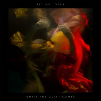 FLYING LOTUS Until The Quiet Comes - Vinyl 2xLP (black)
