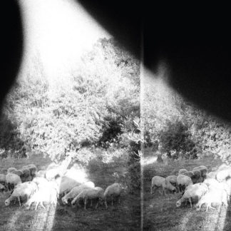 GODSPEED YOU! BLACK EMPEROR Asunder, Sweet And Other Distress - Vinyl LP (black)