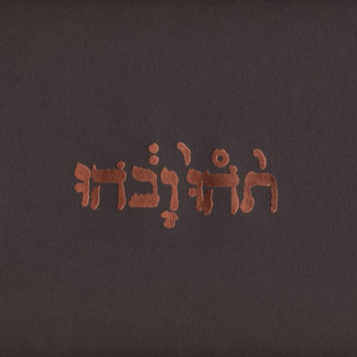 GODSPEED YOU! BLACK EMPEROR Slow Riot for New Zero Kanada - Vinyl LP (black)