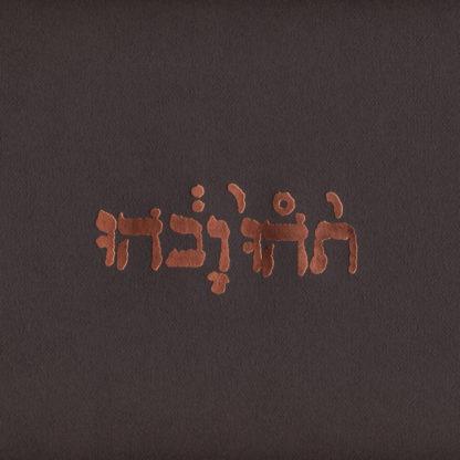 GODSPEED YOU! BLACK EMPEROR Slow Riot for New Zero Kanada - Vinyl LP (black)
