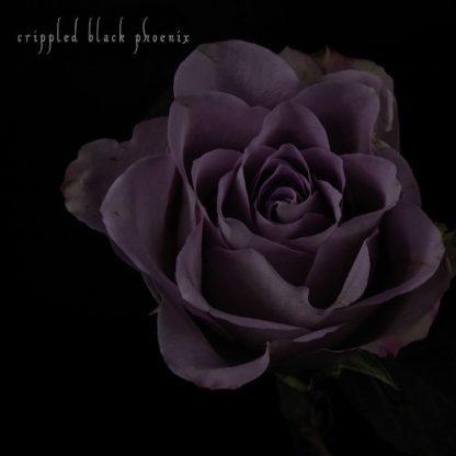 "CRIPPLED BLACK PHOENIX Painful Reminder / Dead Is Dead - Vinyl 10"" (gold purple marble | black)"