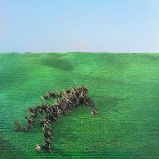 SQUID Bright Green Field - Vinyl 2xLP (black)
