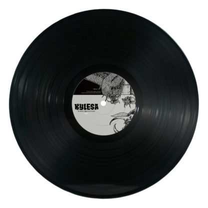 KYLESA To Walk A Middle Course - Vinyl LP (black)
