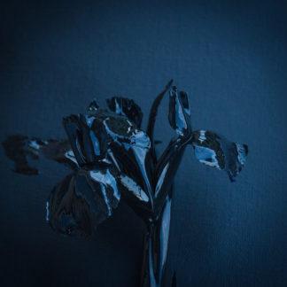 A SWARM OF THE SUN The Rifts - Vinyl 2xLP (blue)