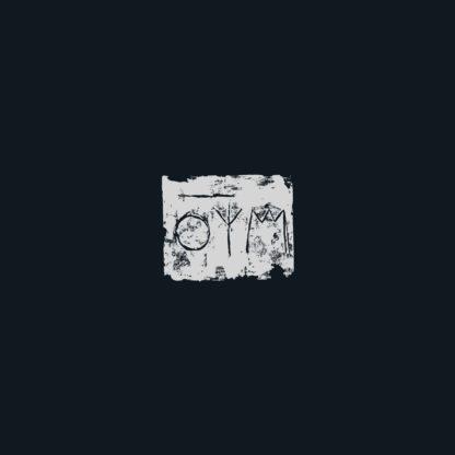 A SWARM OF THE SUN The Woods - Vinyl LP (black)
