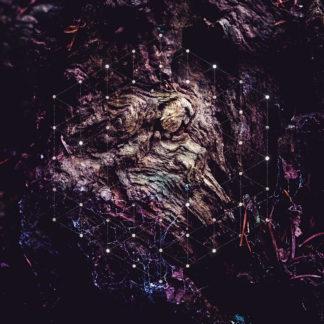 PSYCHONAUT Unfold the God Man - Vinyl 2xLP (black)