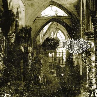 DER WEG EINER FREIHEIT Agonie - Vinyl LP (gold)