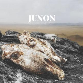 JUNON The Shadows Lengthen - Vinyl LP (blue | yellow)