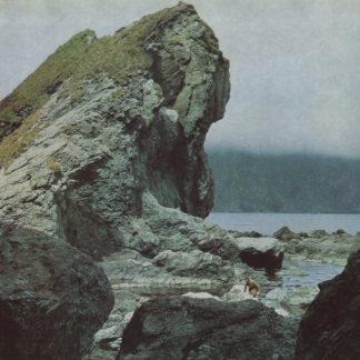 MOTORAMA Many Nights - Vinyl LP (black)